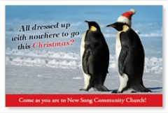 Christmas Penguins Postcard