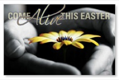 Come Alive Easter Postcard