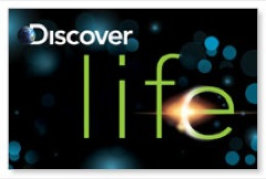 Discover Life Postcard