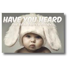 Baby Bunny Ears Postcard