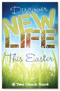 Discover New Life Postcards