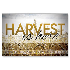 Harvest is Here Postcard