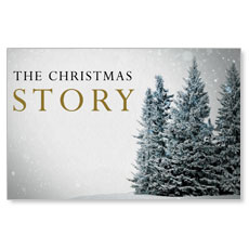 Christmas Story Trees Postcard