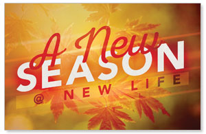 New Season Leaves Church Postcards