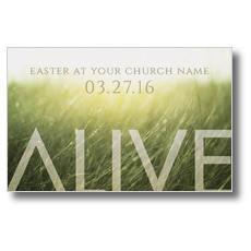 Alive Easter Postcard