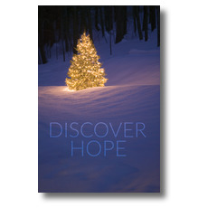Discover Hope Bright Tree Postcard