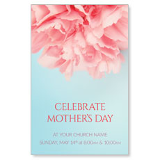 Carnation Mothers Day Postcard