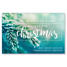 Christmas Branches Postcard