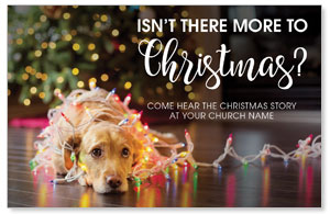 Dog More to Christmas Church Postcards