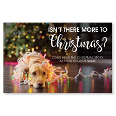 Dog More to Christmas Postcard