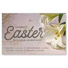 Easter Lilies Postcard