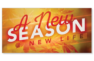 "New Season Leaves 11"" x 5.5"" Oversized Postcards"