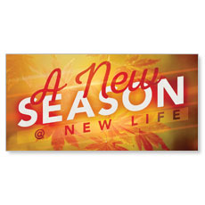 New Season Leaves XLarge Postcard