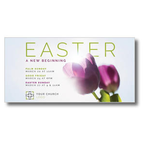 "Easter Purple Tulips 11"" x 5.5"" Oversized Postcards"