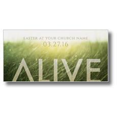 Alive Easter XLarge Postcard