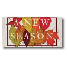 Fall Season Leaves XLarge Postcard