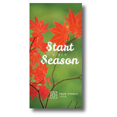 Season Red Leaves XLarge Postcard