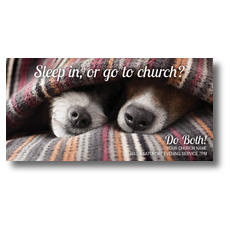 Sleep In Or Church XLarge Postcard