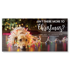 Dog More to Christmas XLarge Postcard