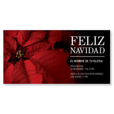 Navidad Poinsettia Spanish XLarge Postcard