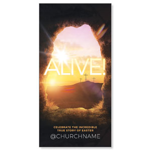 "Alive Sunrise Tomb 11"" x 5.5"" Oversized Postcards"
