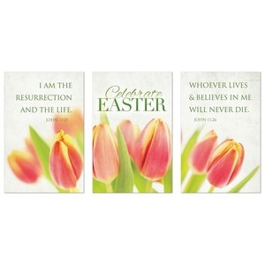 Tulips Triptych Wall Art