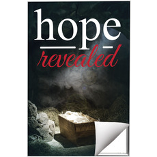 Hope Revealed Manger