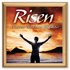 Risen Power Banner