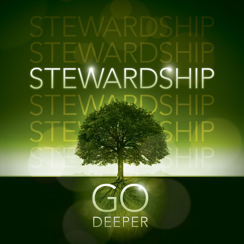 Deeper Roots Stewardship Banner Church Banners