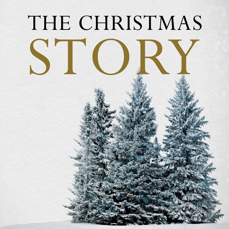 Christmas Story Trees Banner Church Banners Outreach
