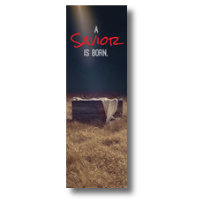 Savior Born Banner