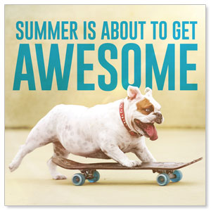 Awesome Summer Dog Social Media Ad Packages