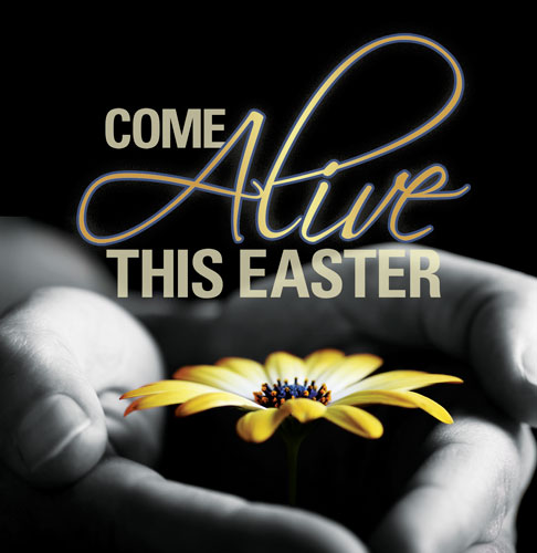 Banners, Easter, Come Alive Easter - 3 x 3, 3' x 3'