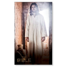 The Bible Risen Christ
