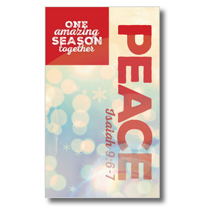 One Amazing Season Peace Banners