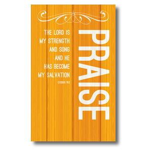 Painted Wood Praise 3 x 5 Vinyl Banner