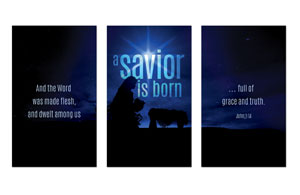 Blue Savior Born 3 x 5 Vinyl Banner