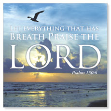 Breath Praise Lord Window Banner