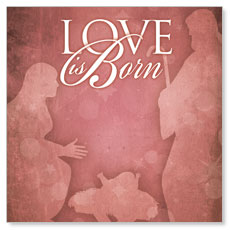 Born Love Window Banner