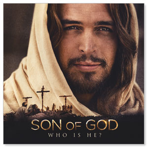 Son of God Who is He? Window Banners