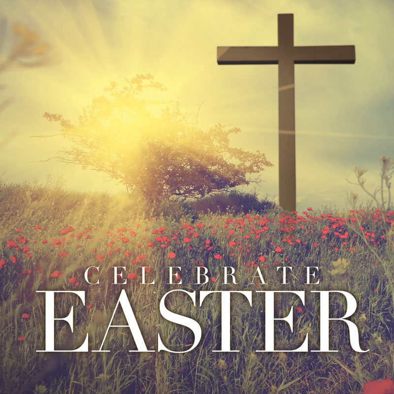 Window Banners, Easter, Celebrate Easter Cross, 3' x 3'