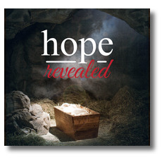 Hope Revealed Manger Window Banner